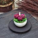 Свещ 3 лалета пурпур саксийка