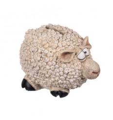Касичка овца